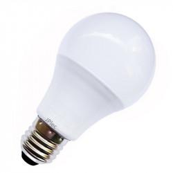 AMPOULE LED 12V / 24V 9W E27
